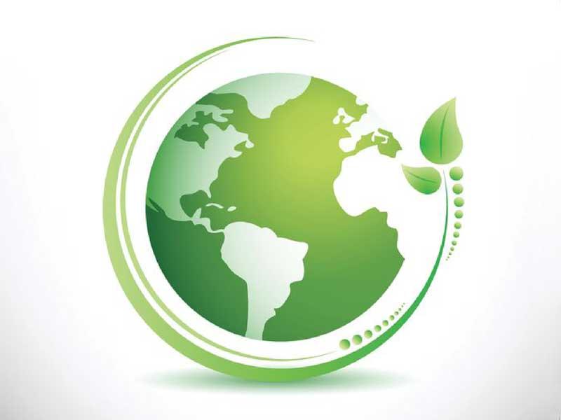 venta-de-productos-desechables-biodegradables